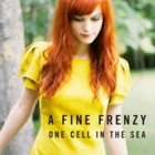 A Fine Frenzy- One cell in the sea