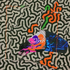 Animal Collective- Tangerine reef