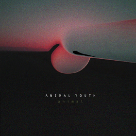 Animal Youth- Animal