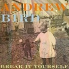 Andrew Bird- Break it yourself