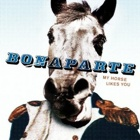 Bonaparte- My horse likes you