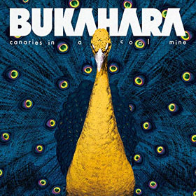 Bukahara- Canaries in a coal mine
