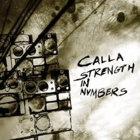 Calla- Strength in numbers