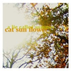 Cat Sun Flower- A lie called summer