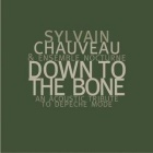 Sylvain Chauveau & Ensemble Nocturne- Down to the bone - An acoustic tribute to Depeche Mode