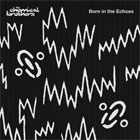 The Chemical Brothers- Born in the echoes