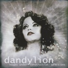 Dandylion- Images under construction - Selections
