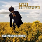 Fyfe Dangerfield- Fly yellow moon