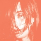 Deerhunter - Microcastle / Weird era cont.