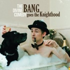 The Divine Comedy- Bang goes the knighthood