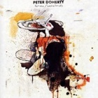 Peter Doherty- Grace/Wastelands