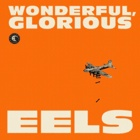 Eels- Wonderful, glorious