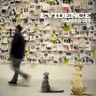 Evidence- Cats & dogs