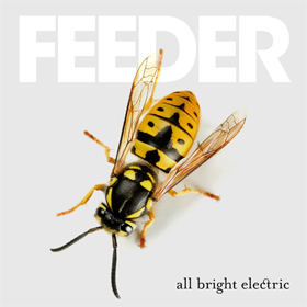 Feeder- All bright electric