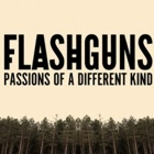 Flashguns- Passions of a different kind
