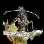 Gang Gang Dance - Eye contact