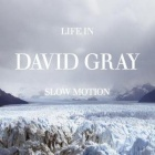 David Gray- Life in slow motion