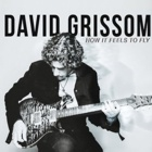David Grissom- How it feels to fly