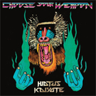 Hiatus Kaiyote- Choose your weapon