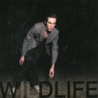 The Icarus Line - Wildlife