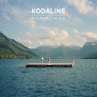 Kodaline- In a perfect world