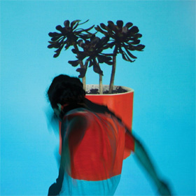 Local Natives- Sunlit youth