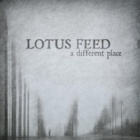 Lotus Feed- A different place