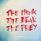 Me And My Drummer- The hawk, the beak, the prey