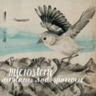 Microstern- Airplanes and sparrows