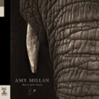 Amy Millan- Masters of the burial