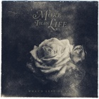 More Than Life- What's left of me