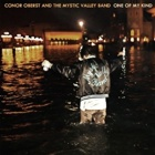 Conor Oberst And The Mystic Valley Band- One of my kind