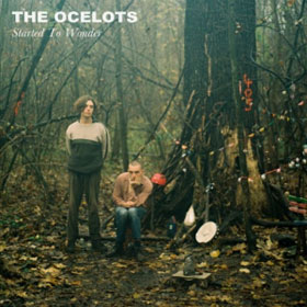 The Ocelots- Started to wonder