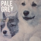 Pale Grey- Best friends