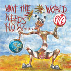 Public Image Limited- What the world needs now ...