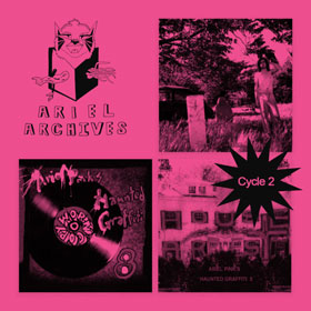 Ariel Pink - Ariel archives – Cycle 2