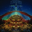 Chris Robinson Brotherhood- Big moon ritual