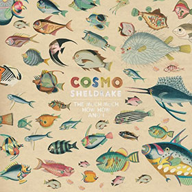 Cosmo Sheldrake- The much much how how and I