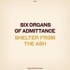 Six Organs Of Admittance - Shelter from the ash