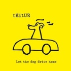 Teitur- Let the dog drive home