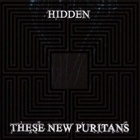 These New Puritans - Hidden