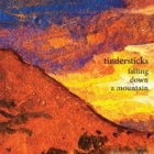 Tindersticks- Falling down a mountain