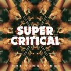 The Ting Tings- Super critical