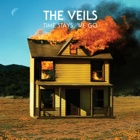 The Veils- Time stays, we go