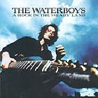 The Waterboys - A rock in the weary land