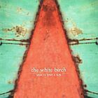 The White Birch- Star is just a sun