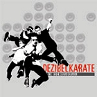 The Wohlstandskinder - Dezibelkarate