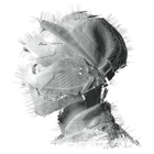 Woodkid- The golden age