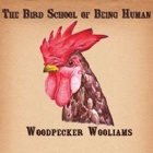 Woodpecker Wooliams- The bird school of being human