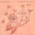 James Yorkston- The year of the leopard